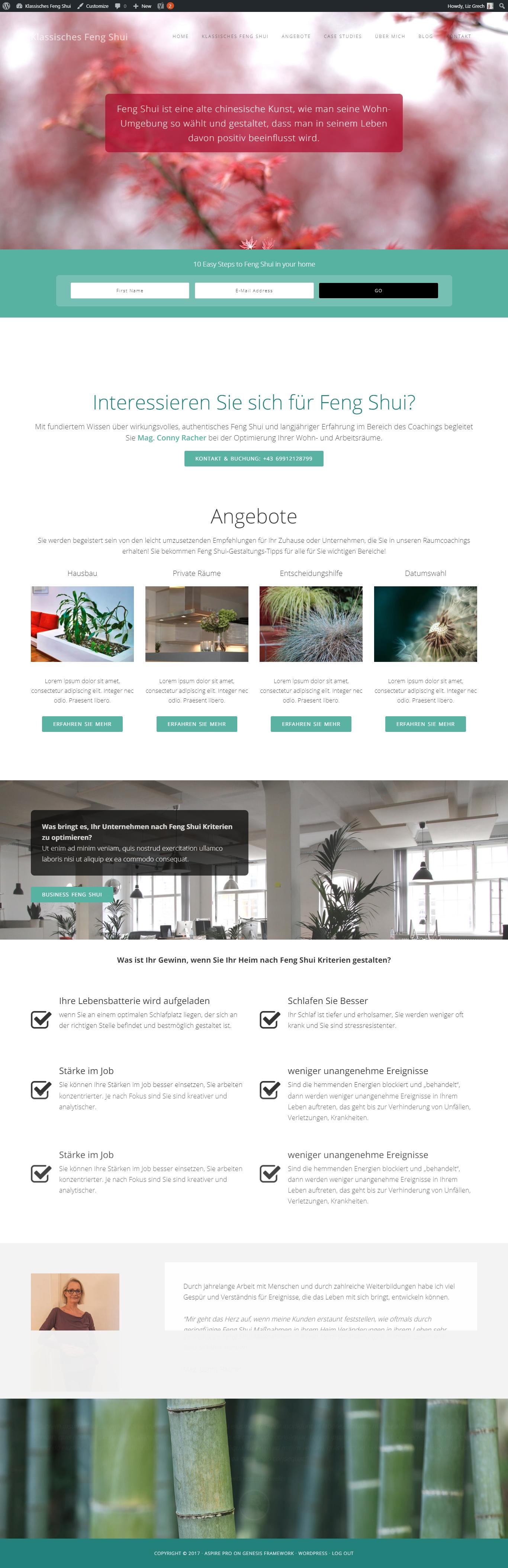 aspire theme issues strategic wordpress websites seo. Black Bedroom Furniture Sets. Home Design Ideas